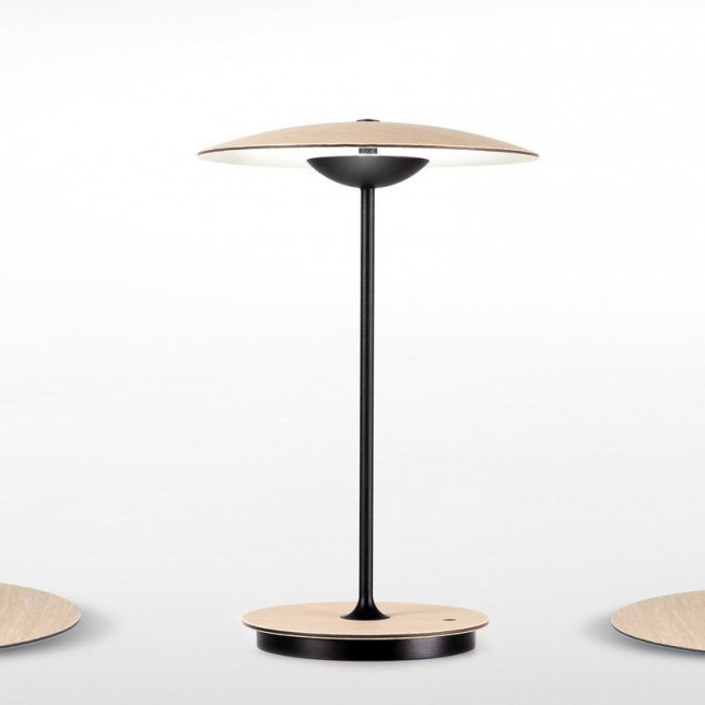 Ginger 20 M Portable Mt, Battery Powered Floor Lamps