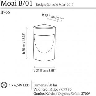 MOAI DE BOVER