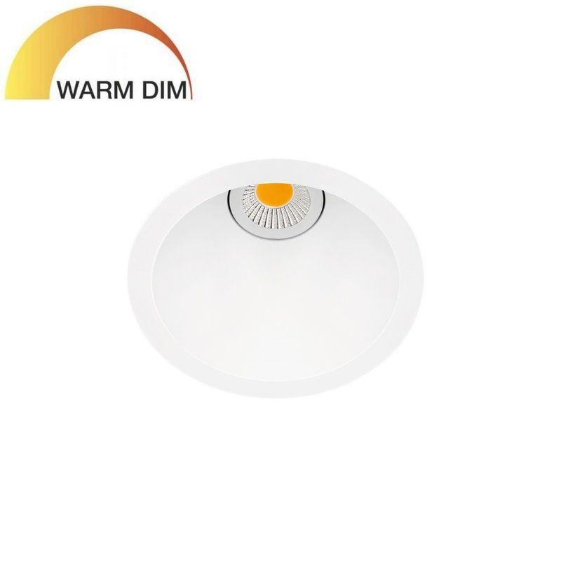 SWAP DIM TO WARM BY ARKOS LIGHT